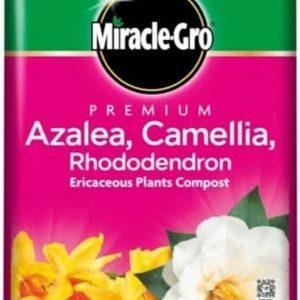 Premium Azalea, Camellia & Rhododendron Ericaceous Compost