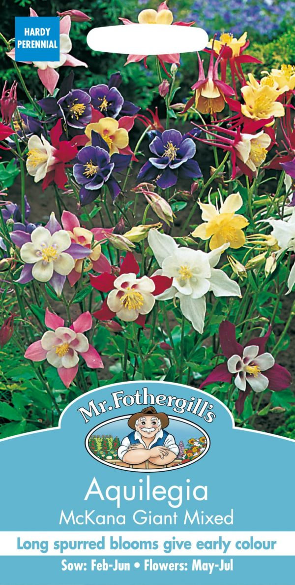 AQUILEGIA McKana Giant Mixed
