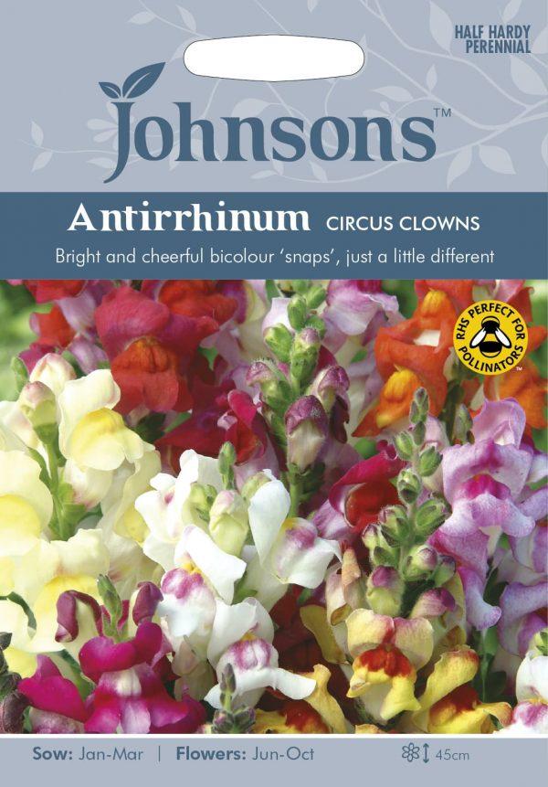 ANTIRRHINUM Circus Clowns