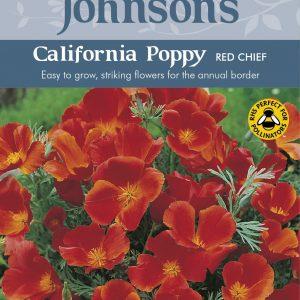 CALIFORNIA POPPY Red Chief