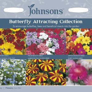 BUTTERFLY ATTRACTING COLLECTION