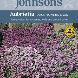 AUBRIETA Large Flowered Mixed