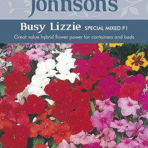 BUSY LIZZIE Special Mixed F1