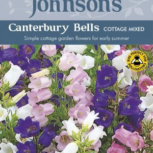 CANTERBURY BELLS Cottage Mixed