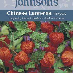 CHINESE LANTERNS - Physalis