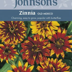 ZINNIA Old Mexico
