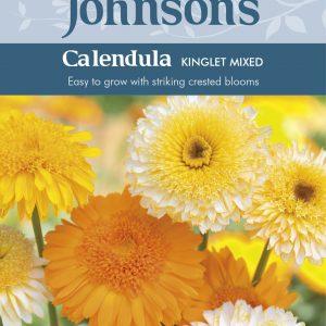CALENDULA Kinglet Mixed