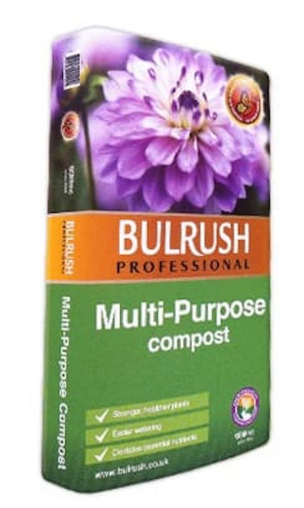 Bulrush Multipurpose