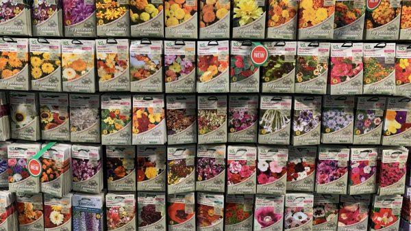 Flower Seeds Lealans Garden Centre