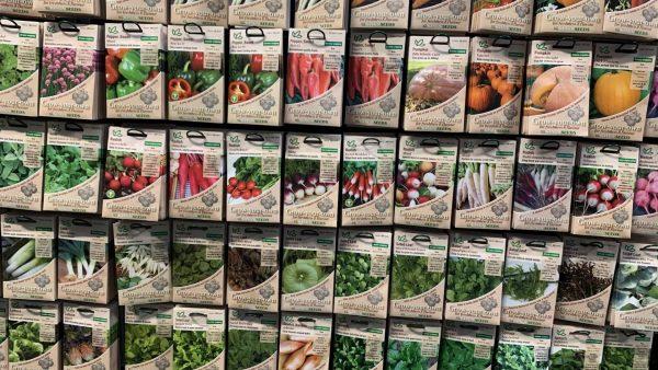 Vegetable Seeds Lealans Garden Centre