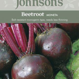 121076 Beetroot Moneta