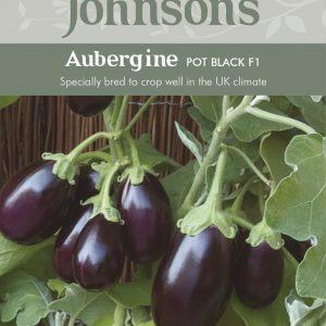 AUBERGINE Pot Black F1