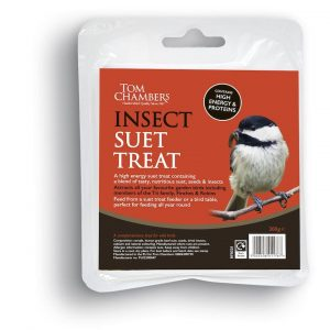 Suet Treat - Insect