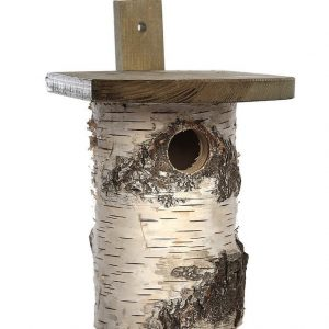 Birch Nest Box -- (FSC)