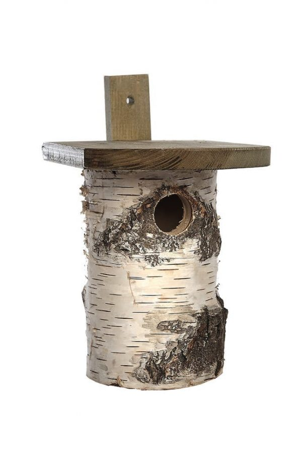 Birch Nest Box -- (FSC)