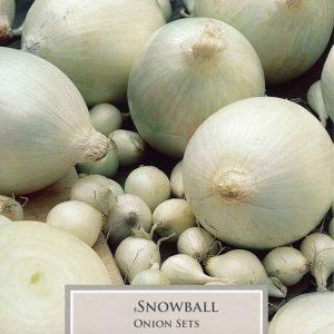 Onion Snowball