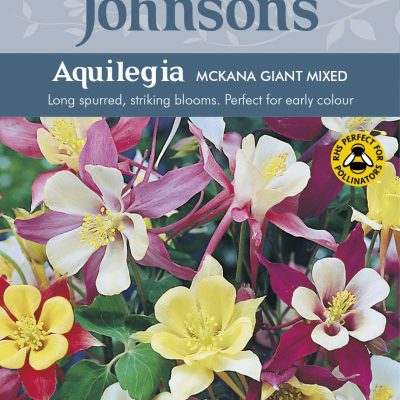 AQUILEGIA McKana Giant Mixed