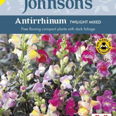 ANTIRRHINUM Twilight Mixed