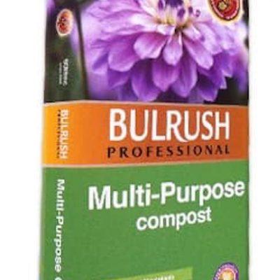 Bulrush Multipurpose